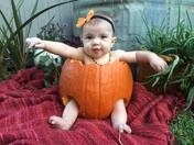 My pumpkin pie!