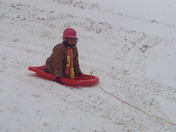 amber baxter snow sledding
