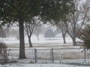 snowy golf course