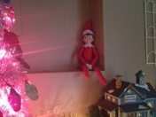 Our Elf Lou Bud