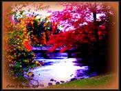 Fall in Tilton, N.H,