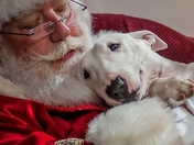 Merry Christmas From Otis