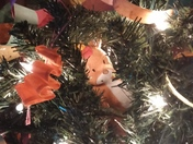 Randall the Reindeer hiding in the tree. We don't have an elf. We have cute litt