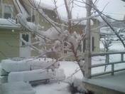 December 1st 2014 snowstorm