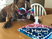 =?utf-8?Q?Harley_Dee_Hope...1st_Birthday_12/15/14....our_baby_gi?= =?utf-8?Q?rl_