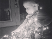 Max fascinated by Christmas lights.