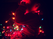 Mighty Max and his Christmas light obsession