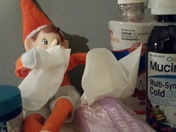 Looks like Elfie caught our cold