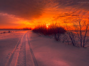 Path To Beautiful