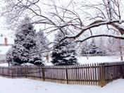 snow 1.21.15