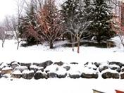 snow 1.24.16