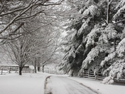 Monday Snow at Lindwood Farm, Greensburg