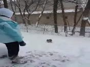Cute snow pet video