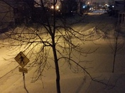 Point street Manchester NH 7:50pm