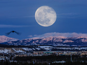 Moon over Whitehorse