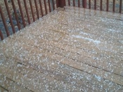 Hail in Lawrenceburg