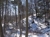 Beautiful Winter's Day