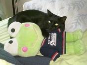Lexi - My lil' PATS fan.