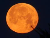 Beautiful Snow Moon