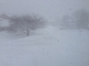 snow snow and more snow