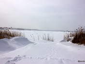 Winter time on Great Bay in Newington