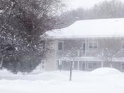 blizzard 15