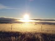 Rainsville, New Mexico