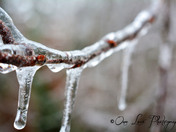 Ice Ice Baby.....TOO COLD!!