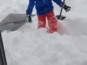 Bailey dives into snow