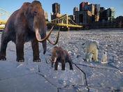 Ice Age Throw Back Thursday