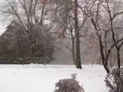 New Albany snow