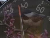 Temperature 5:30 pm