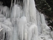 Beautiful Icicles in Manning Park 2