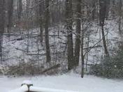 Still Snowing!!!! 9:25 am