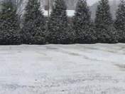 Snowing in Dobson at 9:30 am today