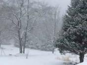 Snow video millers creek nc