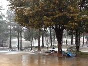 Snow in Farmhaven (Canton), MS