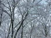 2015 Big Snow Storm