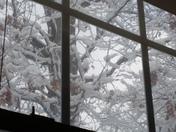 Blue Sky's Trying To Peek Through.....February 2015