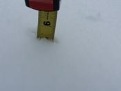 5 1/2 inches beautiful snow in my backyard