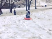 Doggy sledding:)