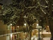Winter wonderland in Uptown