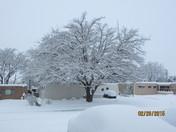 Snow @ Eubank and Candelaria