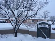 Snowpocalipse!