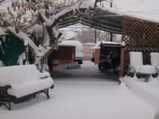 Snow from Damitrius Saavedra