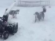Snow day fun in Mount Joy, PA