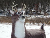 "Snow Is Very ""Deer"" To Me."