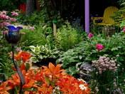 My hidden garden