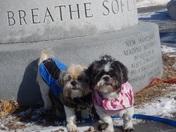 Spencer and Bella at hampton beach