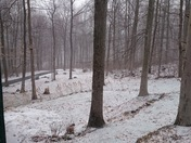 Light snow? Really....